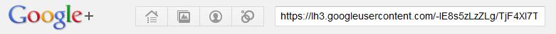 Google+で画像のURLを検索する